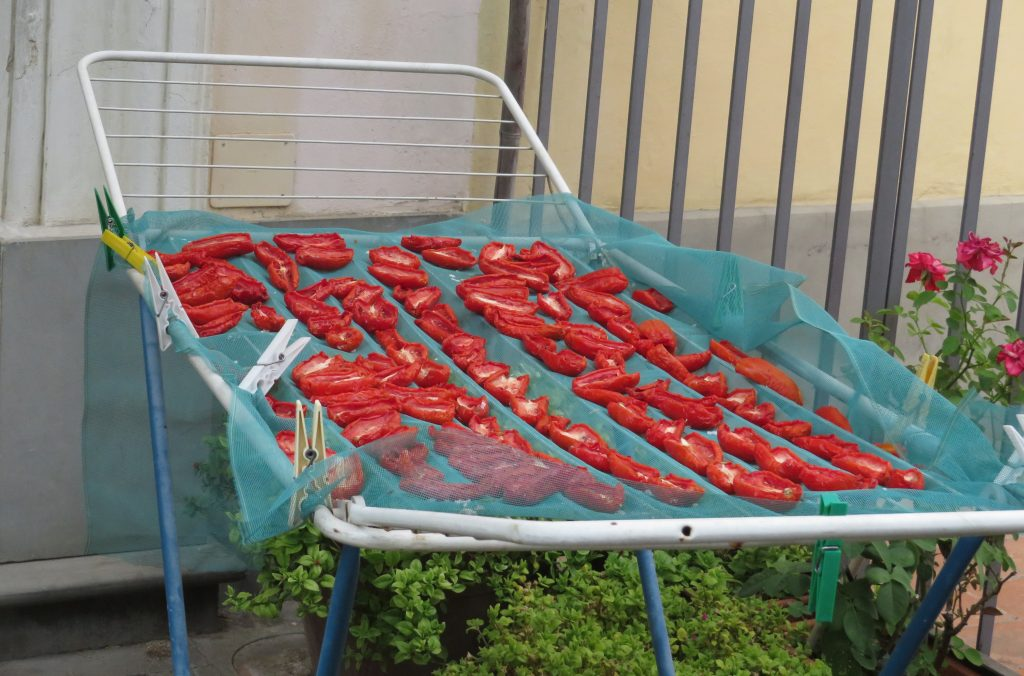 Drying tomatoes in Italy